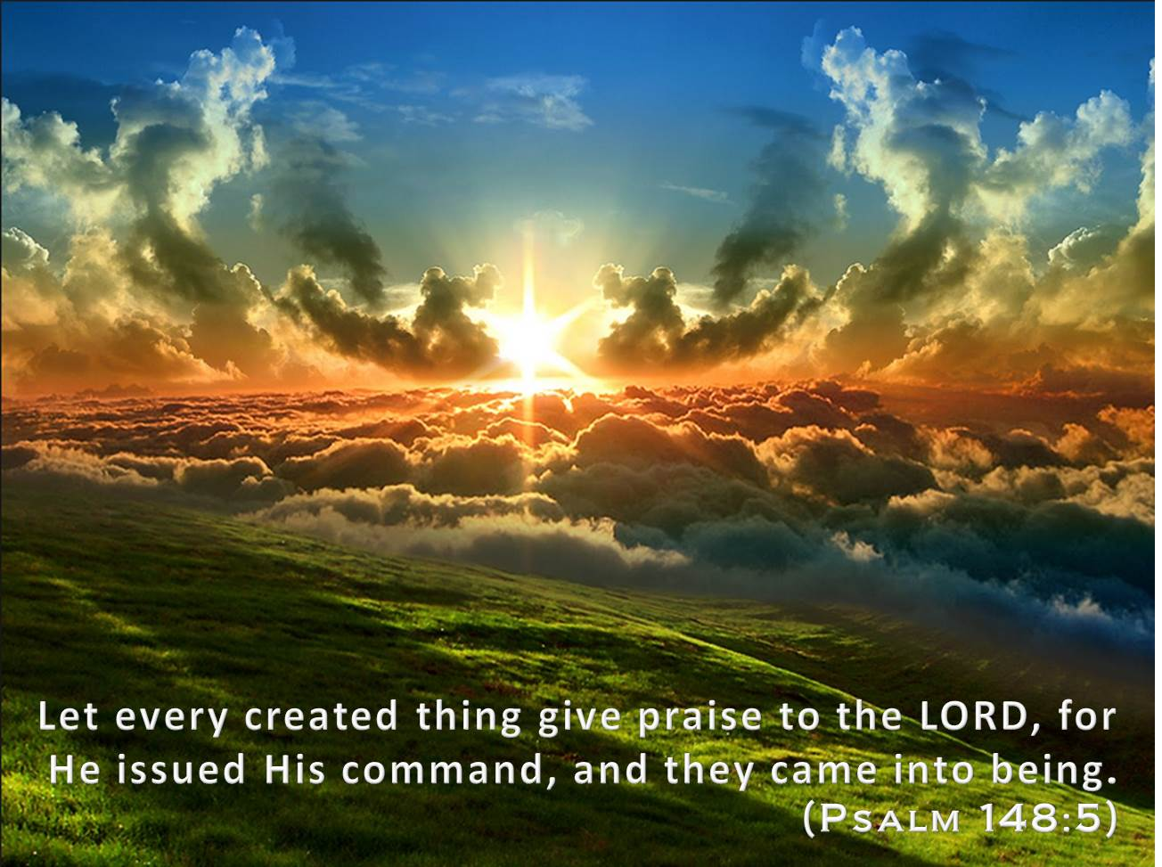 Let all Creation Praise YHVH !